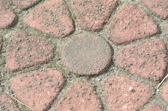 20120118-154924.jpg